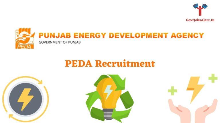 PEDA Recruitment
